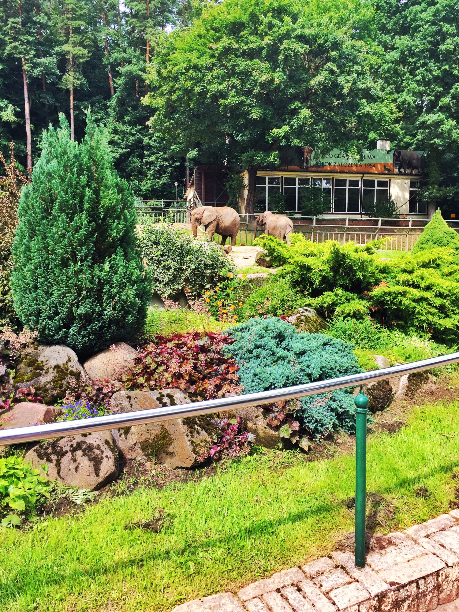 Zoo i Gdansk