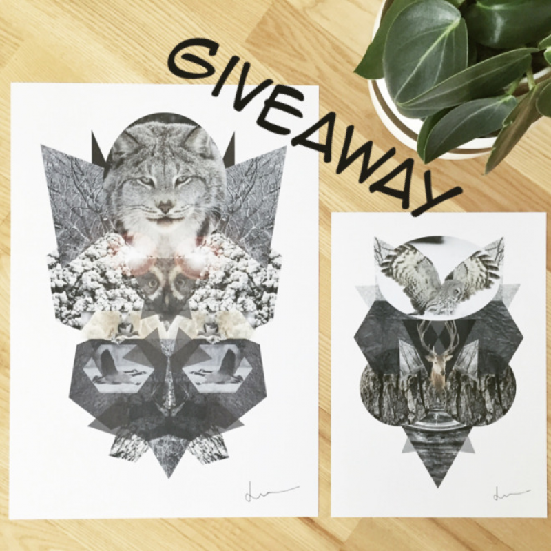 giveaway-pa-instagram0